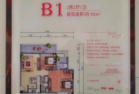 海棠湾温泉社区,康养度假大盘,通透户型